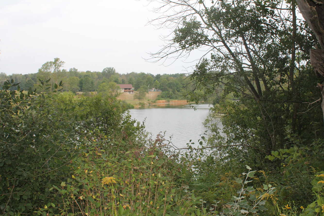 Vista overlooking Lake in Edenville Township